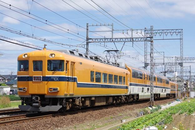 IMGP5944