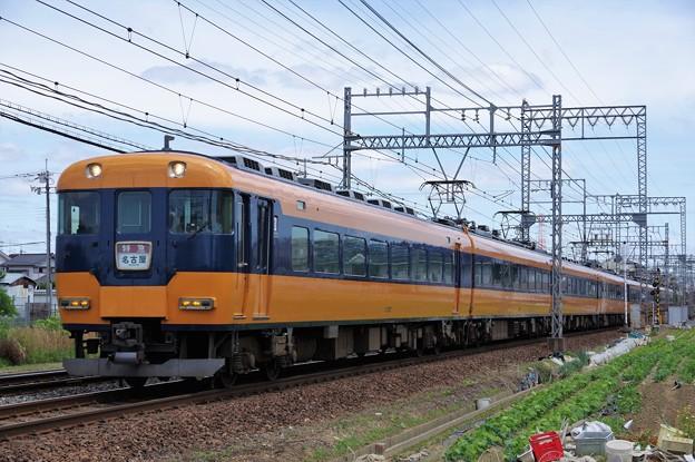 IMGP5968