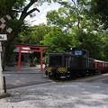 石灰石貨物列車    IMGP5687