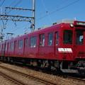 IMGP6535