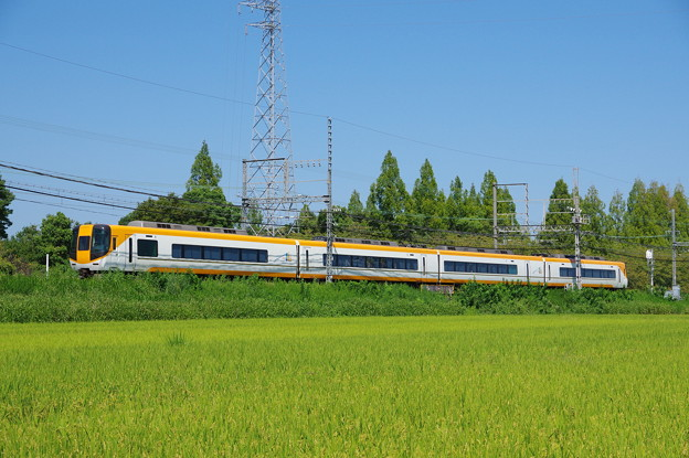 IMGP6552