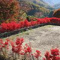 大岡村から見たアルプス