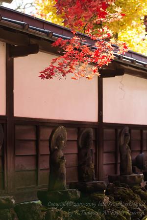 秋の長円寺