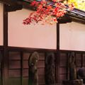 Photos: 秋の長円寺