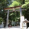 写真: 熊野本宮大社