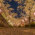 2018 鶴山公園