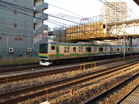E231系(東神奈川駅)