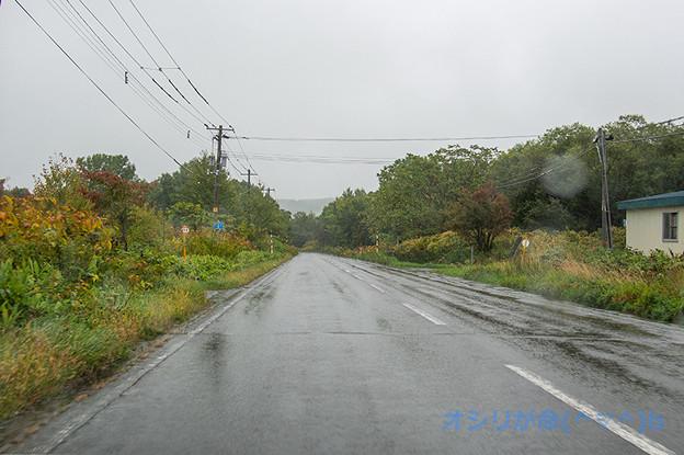 SA013488e