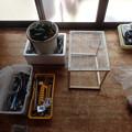ギフチョウ飼育ケースを作る (4)