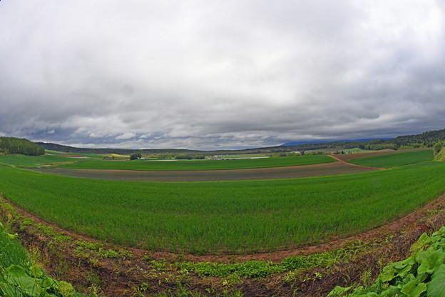 富良野の景色 (2)