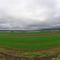 写真: 富良野の景色 (2)