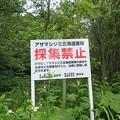 アサマシジミ採集禁止の看板(向遠軽)