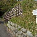 写真: 醤油壺を利用した石垣(岡田)