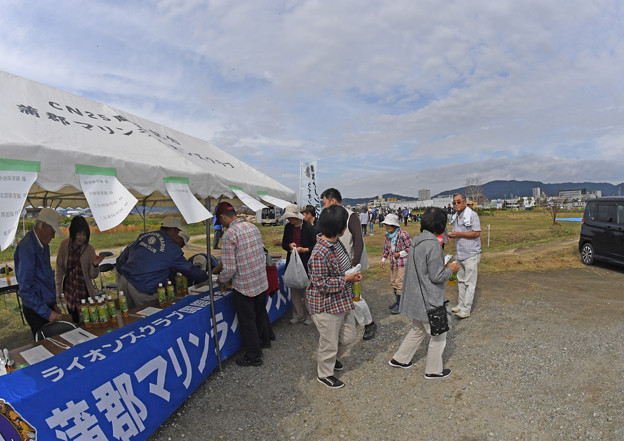 芋掘り大会 (24)