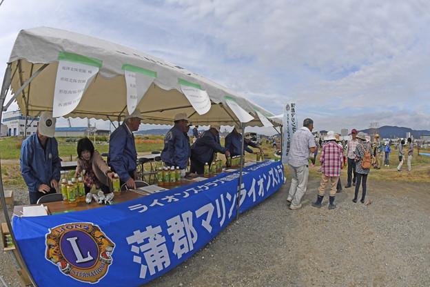 芋掘り大会 (26)