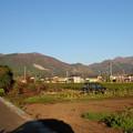 竜ヶ岳と藤原岳