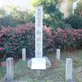 岡田中央公園 (3)