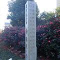 岡田中央公園 (4)