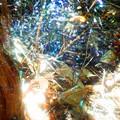 3次元蜘蛛の巣