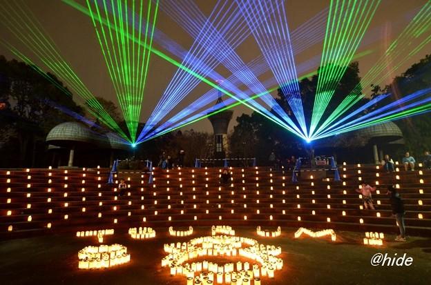 光の花桟敷2015