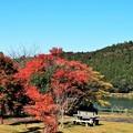 写真: 雲仙鴛の池