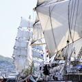 ロシア帆船セイルドリル