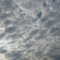 ちょっぴり黒っぽい雲があります~~。。