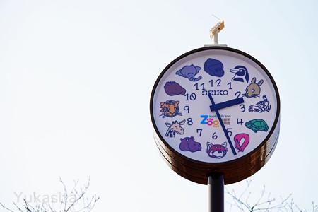 動物園の時計