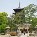 Photos: 村崎一徳_京都東寺IMG_2670
