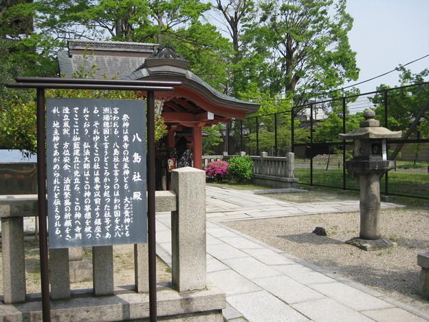 村崎一徳_京都東寺IMG_2671