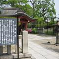 Photos: 村崎一徳_京都東寺IMG_2671