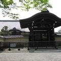Photos: 村崎一徳_京都東寺IMG_2673