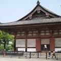 Photos: 村崎一徳_京都東寺IMG_2674