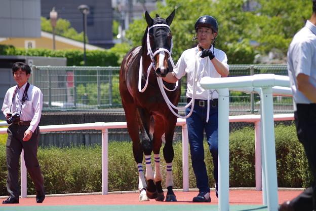 ジャミールフエルテ 2018年最初の新馬戦勝ち馬のご登場