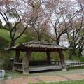 Photos: 「これがまあ まともなタグか 秋の風」  平にご容赦あれ!   秋風嶺サービスエリア Chupungnyeong Service Area