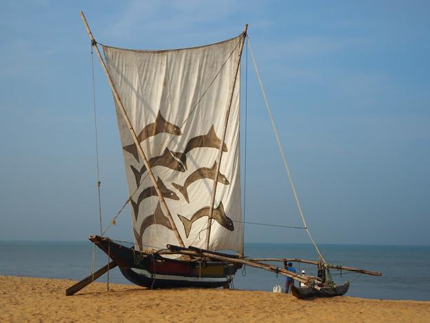 写真: ニゴンボや、この浜舟に帆をあげて~♪ Outrigger canoe,Nigombo