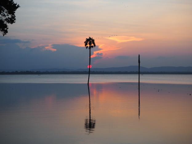 日輪を両断 Sea of Parakrama at Sunset