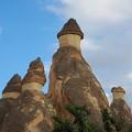毒がないのに喰えない茸ってな~んだ?Mushrooms,Cappadocia