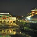 写真: 烏羽玉の夜咲く花や華虹門 Hwahongmun Gate