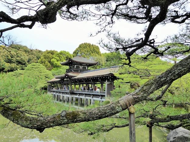 泰平閣(橋殿)Taihei-Kaku(Bridge Builders)