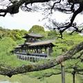 写真: 泰平閣(橋殿)Taihei-Kaku(Bridge Builders)