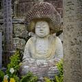 写真: ☆陽だまりの菊の香に酔う阿弥陀かな~京都 Amida Statue