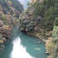緑色の多摩川