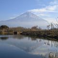 写真: 逆さ富士