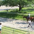写真: レースの合間