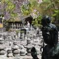 写真: 念仏寺 3