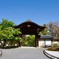 写真: 二尊院 勅使門