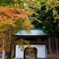 写真: 阿弥陀寺 楼門