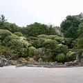 Photos: 鶴亀の庭