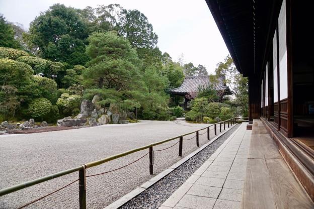 鶴亀の庭 2